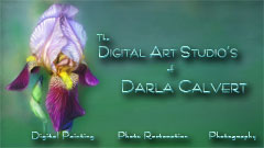Thumbnail image for Welcome to DarlaCalvert.com